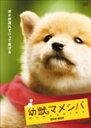 【送料無料】幼獣マメシバ DVD-BOX/佐藤二朗[DVD]【返品種別A】