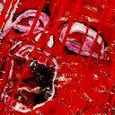 TERROR〜剥離〜/LOUDNESS[SHM-CD]【返品種別A】