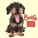 艺人名: T - 【送料無料】Smile(DVD付)/T-SQUARE SUPER BAND[HybridCD+DVD]【返品種別A】
