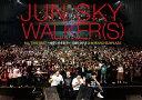 【送料無料】ALL TIME BEST〜全部このままで〜1988-2018@中野サンプラザ/JUN SKY WALKER(S) DVD 【返品種別A】