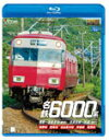 vb-6599