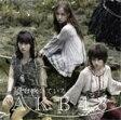 風は吹いている(Type-A)/AKB48[CD+DVD]通常盤【返品種別A】