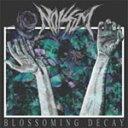Artist Name: N - BLOSSOMING DECAY/ノイゼム[CD]【返品種別A】