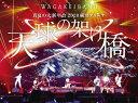 【送料無料】[枚数限定][限定版]真夏の大新年会 2020 横浜アリーナ 〜天球の架け橋〜(初回限定盤)/和楽器バンド[DVD]【返品種別A】