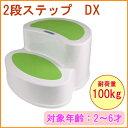 2段ステップ DX 耐荷重100kg 【RCP】【踏み台】【...