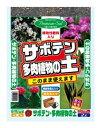 大宮グリーンサービス GS サボテン・多肉植物の土 2L