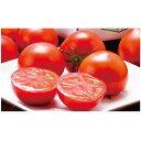 旬のフルーツトマト(訳あり不揃い) 800g 送料込