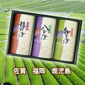 九州三大有名茶産地の新茶