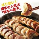 鉄なべ餃子詰合せ(20個×2箱)【福岡県博多名物】...