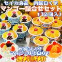 セイカ食品 南国白くまマンゴー詰合せ(200ml×12個入/白・マンゴー各6)鹿児島夏の風物詩うれし