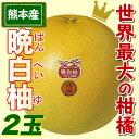 ふるさと駅 熊本名産晩白柚(ばんぺいゆ)(2玉)【熊本県産】I51Z48