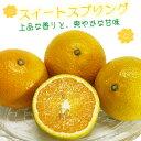 ふるさと駅 スイートスプリング(8〜9kg)(熊本県産)I53Z15