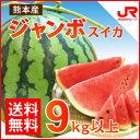 お中元 ふるさと駅 ジャンボスイカ(1玉9kg超) 甘さ大きさ生産量日本一の熊本植木産