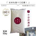 米 10kg 米10 きぬむすめ10kg 令和元年 循米めぐり米 きぬむすめ 玄米 岡山県真庭産 お米10kg送料無料 美味しいお米