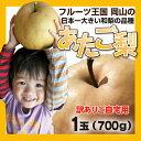 【12月発送】あたご梨ご自宅用 1玉(700g前後)^