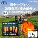 有機にんじん10kg ジュース・B品加工用 吉備路オーガニックワーク 無農薬無化学肥料 有機J