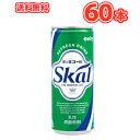 南日本酪農協同 デーリィ スコール ホワイト 250ml×30本入×2ケースまとめ買い 乳性炭酸飲料 愛のスコール 送料無料