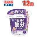 雪印 メグミルク プルーンFe 1日分の鉄分ヨーグルト 食べるタイプ100g×12コ 【クール便】送料無料 鉄・ビタミンB12、葉酸
