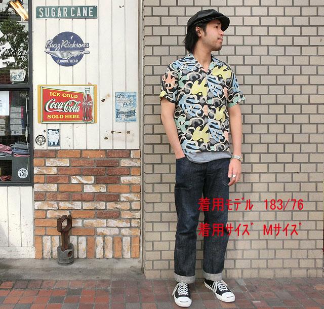 No.SH36950 STAR OF HOLLY...の商品画像