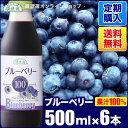 【定期購入】順造選 ブルーベリー100(果汁100%ストレートブルーベリージュース)500ml×6本入りセット【送料無料】