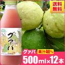 送料無料 順造選 グァバ (果汁40%グァバジュース)500ml×12本入りセット グアバジュース/グアバ