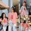 【犬 猫】ペットベッド 夏用 ...