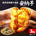 安納芋 さつまいも 種子島産 生芋 3kg 1箱 送料無料 M・Lサイズ 土付き 鹿児島産 安納いも サツマイモ 美味しい 美容 ギフト 焼き芋に