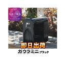 【あす楽】 ガウラミニ(GAURAmini) ブラック 水素水生成器 水素水サーバー 高濃度水素水 GH-T1