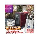【あす楽】 ガウラミニ(GAURAmini) レッド 水素水生成器 水素水サーバー H2-BAG 500ml 1個プレゼント