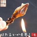 ◆富山県産ほたるいか 素干し 25g入り×2袋/【メール便送料無料】