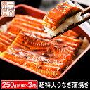 うなぎ 蒲焼き 国産ではございませんがふっくら柔らか 肉厚 超特大 三尾セット 250g前後×3 6