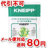 クナイプ バスソルト ユーカリの香り 40g 医薬部外品 ゆうメール送料80円