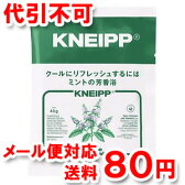 クナイプ バスソルト ミントの香り 40g ゆうメール送料80円