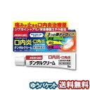 【第2類医薬品】 メディケアシリーズ デンタルクリーム 5g メール便送料無料_