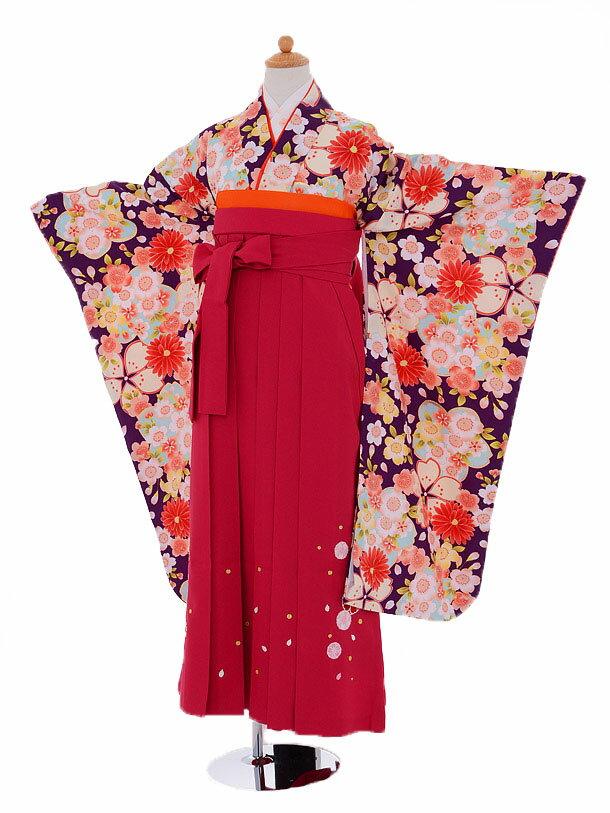 【レンタル】小学生 卒業式 貸衣装 袴 レンタル...の商品画像