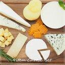 神田のちーず屋さん マスカルポーネ・カマンベール・ブリー・ブルーチーズ・カチョカヴァロ・ハード系の9種のチーズセット