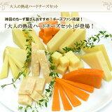 【レビューを書いて!】 大人の熟成5種類のハードチーズセット 【RCP】