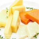パルミジャーノレッジャーノ・コンテ・ミモレット・グリエール・エメンタールの大人の熟成5種類のハードチーズセット