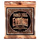 ERNIE BALL #2548 Everlast Coated Phosphor Bronze Acoustic Strings Light (11-52)《アコースティックギター弦》 アーニーボール/エ..