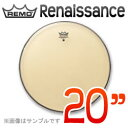 rem-renaisnc-20
