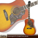 Epiphone Hummingbird Pro (Faded Cherry Burst)[EEHBFCNH1]【送料無料】