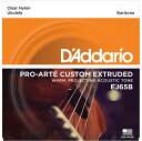 D'Addario Pro-Arte Custom Extruded Ukulele, Baritone EJ65B [EJ65B] 《バリトンウクレレ用弦》【ネコポス】