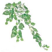 【人工観葉植物】ミニポトスバイン S 【観葉植物 造花 フェイクグリーン 光触媒 CT触媒 インテリア】[G-L]