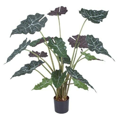 【送料無料】アロカシアツリー(L)【観葉植物 造花 SC(CT)触媒・光触媒 フェイクグリーン】[G-L]