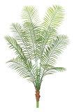 【RCP】アレカパームツリー(プラスチック)【観葉植物 造花 SC(CT)触媒 フェイクグリーン】[G-L]
