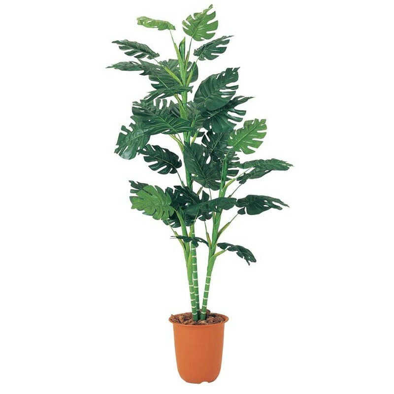 180cmスプリットフィロツリー【観葉植物 造花 CT触媒/光触媒 フェイクグリーン】[D-F]
