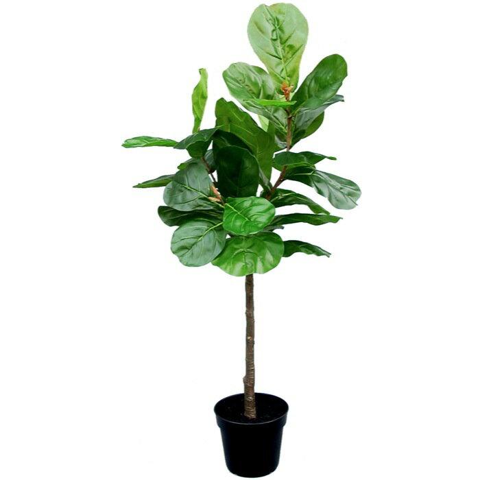 【送料無料】カシワバゴム 135cm 【観葉植物 造花 CT触媒/光触媒 フェイクグリーン】[W-S] 癒しのグリーンでいつでも空気すっきり♪