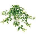 フェイクグリーン ミニ トラディスカンチア【観葉植物 小型 造花 CT触媒 光触媒 インテリア】の写真