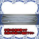 ESCO(エスコ) 25mmx3.0m/0.5ton ベルトスリング(エンドレス) EA981DF-3