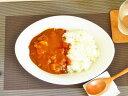 これぞカレー鉢!!26cm 【Lサイズ】【白い食器 洋食器 ...